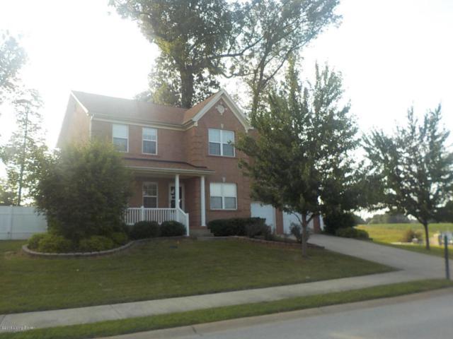 301 Vinelad Place Dr, Vine Grove, KY 40175 (#1510010) :: Team Panella