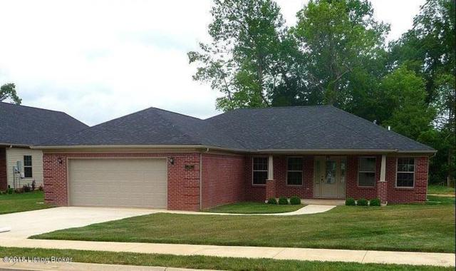 135 Vineland Dr, Vine Grove, KY 40175 (#1510126) :: Segrest Group