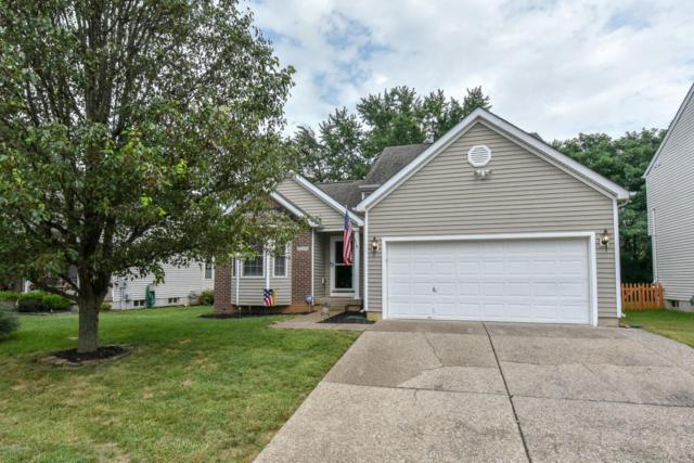 10219 Arbor Oak Dr, Louisville, KY 40229 (#1512112) :: The Sokoler-Medley Team