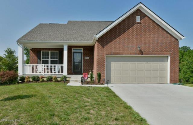 17114 Creek Vista Ct, Louisville, KY 40245 (#1512607) :: Team Panella