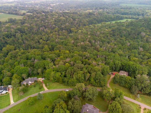 103 Laurel River Dr, Shepherdsville, KY 40165 (#1512994) :: Segrest Group