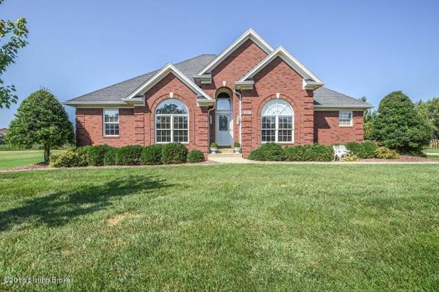 293 Cherry Hill Pkwy, Mt Washington, KY 40047 (#1513125) :: At Home In Louisville Real Estate Group