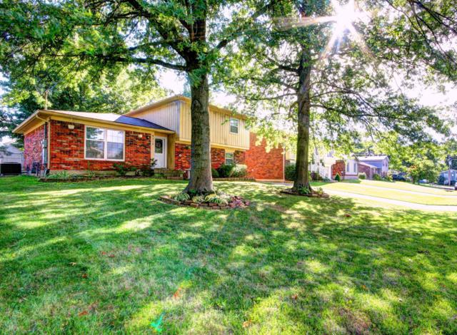9212 S Pirogue Ct, Louisville, KY 40299 (#1513483) :: The Sokoler-Medley Team