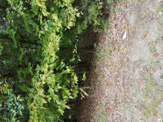 302 Woodview Dr, Brandenburg, KY 40108 (#1513484) :: The Sokoler-Medley Team