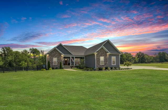 369 Painted Leaf Ct, Shelbyville, KY 40065 (#1513704) :: Segrest Group