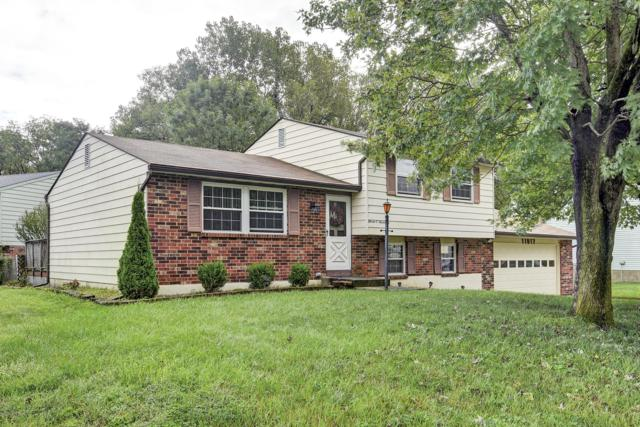 11017 Neptune Pl, Louisville, KY 40272 (#1514227) :: Segrest Group