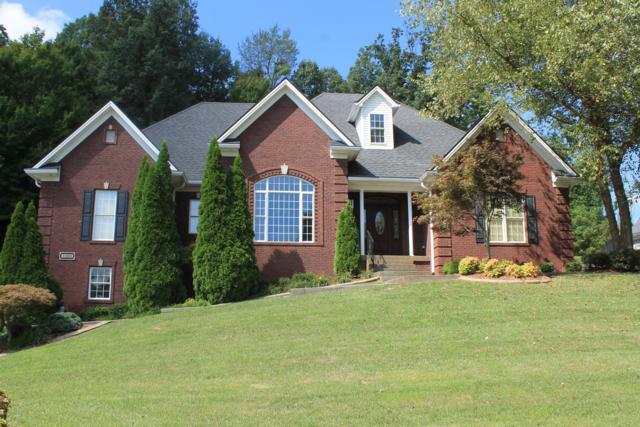 3300 Hardwood Forest Dr, Louisville, KY 40214 (#1514546) :: Segrest Group