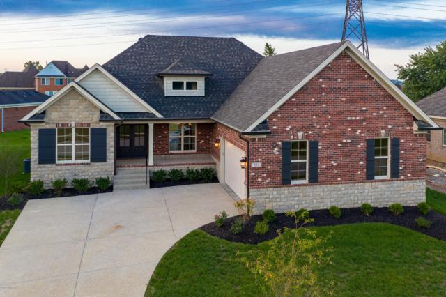 924 Willow Pointe Dr, Louisville, KY 40299 (#1514704) :: The Stiller Group