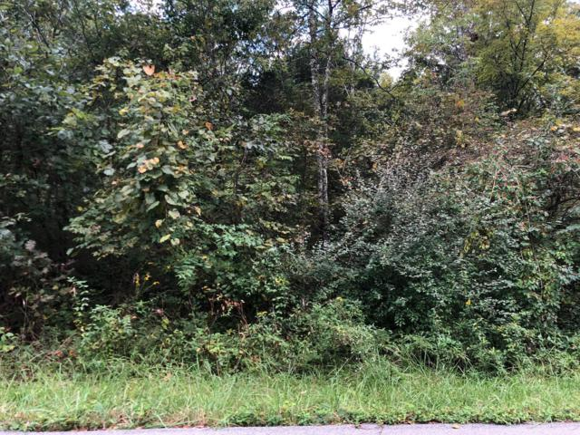 Lot 4&5 Hollow Hills Rd, Mt Washington, KY 40047 (#1514911) :: The Sokoler-Medley Team