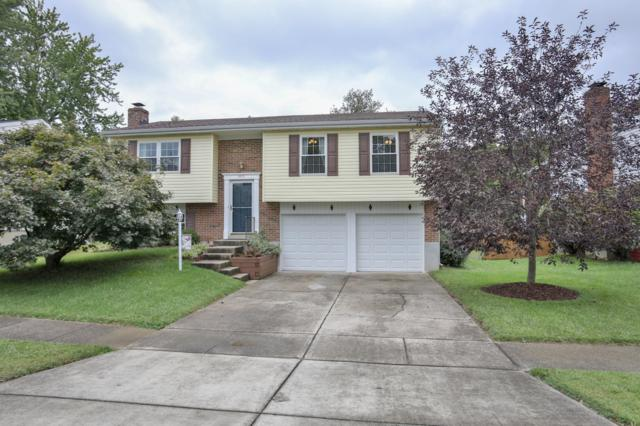 5600 Sprigwood Ln, Louisville, KY 40291 (#1515183) :: At Home In Louisville Real Estate Group
