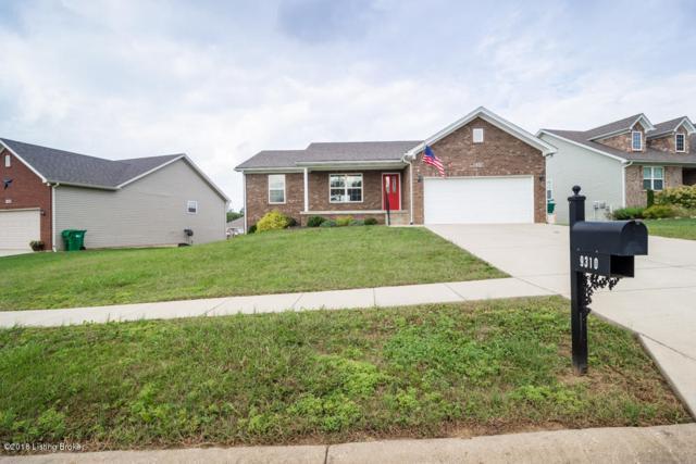 9310 Community Cove Way, Louisville, KY 40229 (#1516481) :: Team Panella