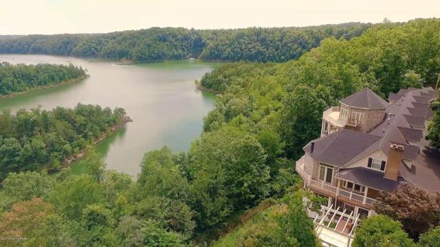 863 Viewpointe Rd, Jamestown, KY 42629 (#1516613) :: The Sokoler-Medley Team