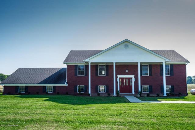 146 Tana Ln, Leitchfield, KY 42754 (#1516795) :: Segrest Group