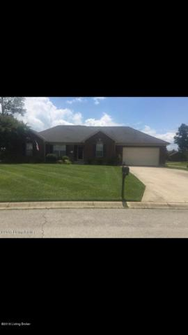 101 Pacific Ct, Coxs Creek, KY 40013 (#1516915) :: At Home In Louisville Real Estate Group