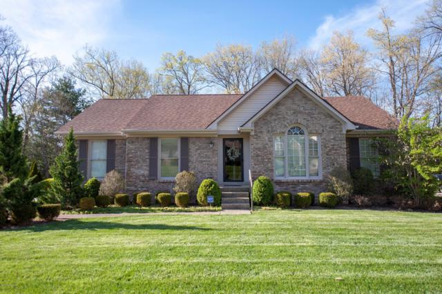 8313 Lacevine Rd, Louisville, KY 40220 (#1517160) :: The Stiller Group
