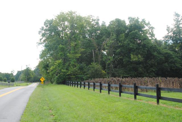 2810 Covington Ridge Rd, Westport, KY 40077 (#1517565) :: The Elizabeth Monarch Group