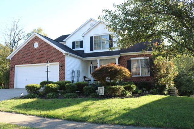 9415 River Trail Dr, Louisville, KY 40229 (#1517892) :: The Stiller Group