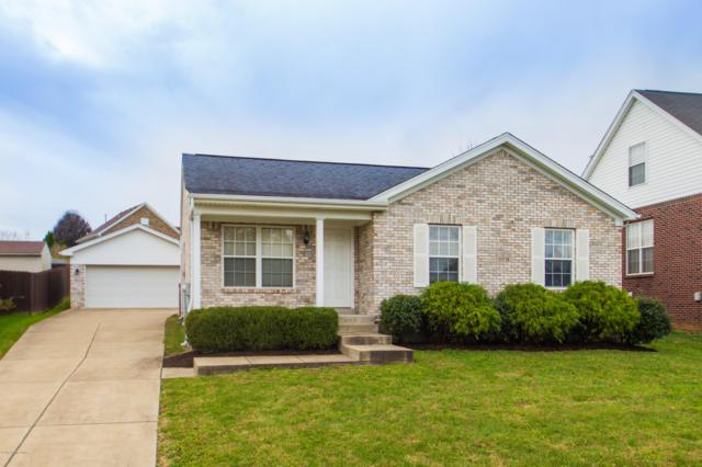 11719 Reality Trail, Louisville, KY 40229 (#1518938) :: The Stiller Group