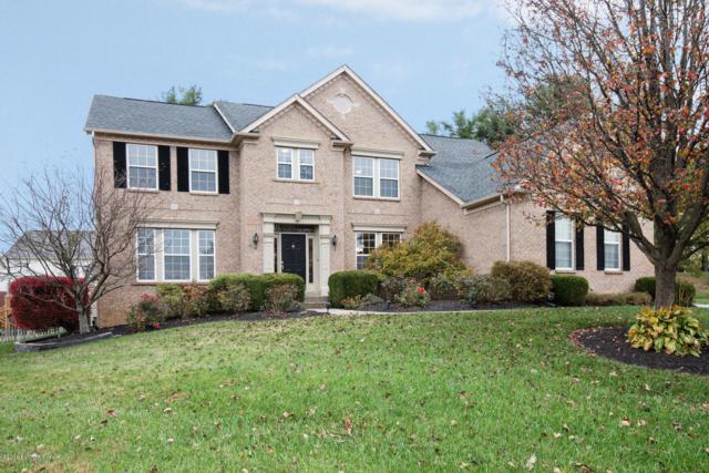 4028 Whiteblossom Estates Ct, Louisville, KY 40241 (#1519131) :: The Sokoler-Medley Team