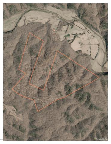 0 Chestnut Flat Rd, Columbia, KY 42728 (#1519351) :: Keller Williams Louisville East