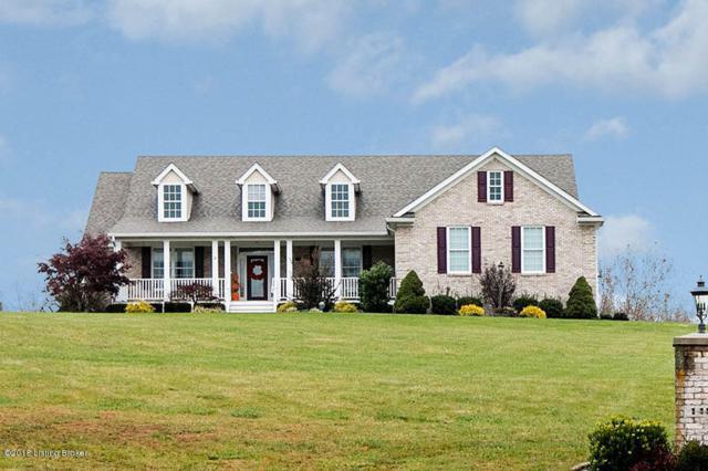110 Chesapeake Meadows Ct, Finchville, KY 40022 (#1519415) :: The Sokoler-Medley Team