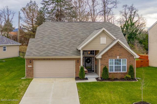 217 Brookfield Hills Ct, Louisville, KY 40245 (#1521096) :: The Stiller Group
