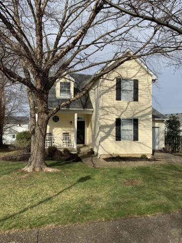 10813 Pineview Ct, Louisville, KY 40299 (#1521642) :: The Stiller Group