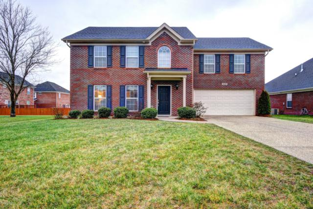 6608 Cherry Willow Ct, Louisville, KY 40291 (#1521957) :: The Stiller Group