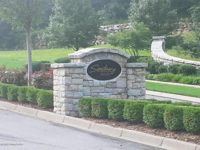 4119 Sanctuary Bluff Ln, Louisville, KY 40241 (#1522105) :: Team Panella