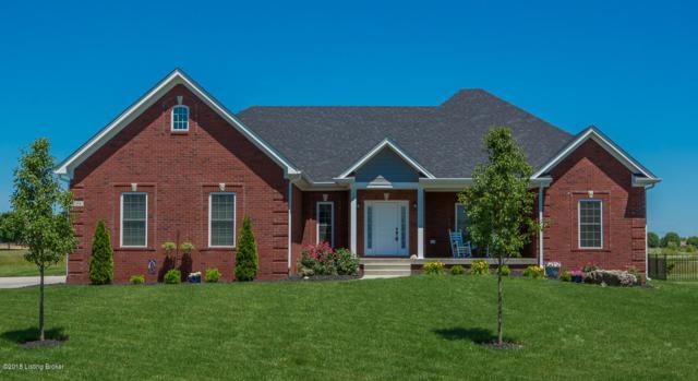 294 Heritage Hill Pkwy, Shepherdsville, KY 40165 (#1522251) :: Team Panella