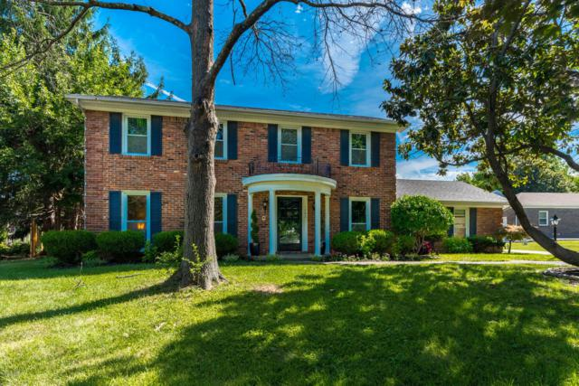 1203 Fox Gap Trace, Louisville, KY 40223 (#1523039) :: Segrest Group