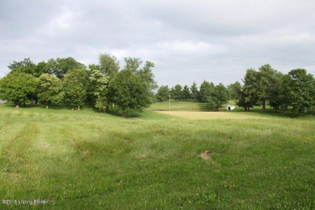 Lot 6A Otter Creek Rd, Vine Grove, KY 40175 (#1523881) :: The Sokoler-Medley Team
