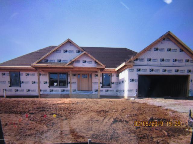 10310 Valley Farms Blvd, Louisville, KY 40272 (#1524105) :: The Sokoler-Medley Team