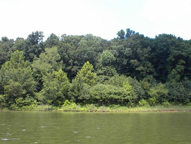 1B Sylvan Cir, Rough River, KY 42754 (#1524180) :: The Sokoler-Medley Team