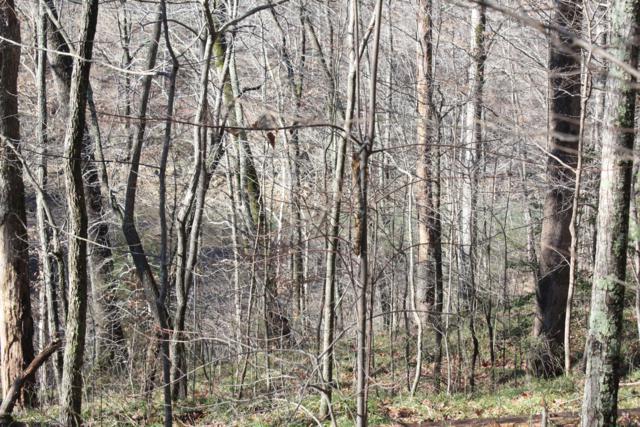 24-27 Laurel Ridge Rd, Mammoth Cave, KY 42259 (#1524515) :: The Sokoler-Medley Team