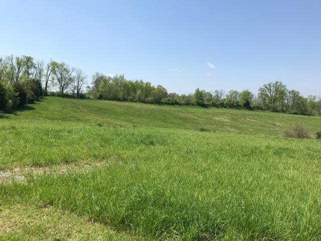 701 Hidden Creek Trail, Simpsonville, KY 40067 (#1524631) :: The Sokoler-Medley Team
