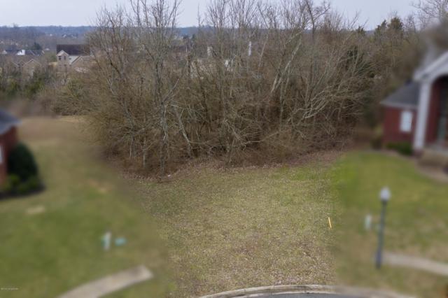 17201 Polo Hills Pl, Louisville, KY 40245 (#1524959) :: The Stiller Group