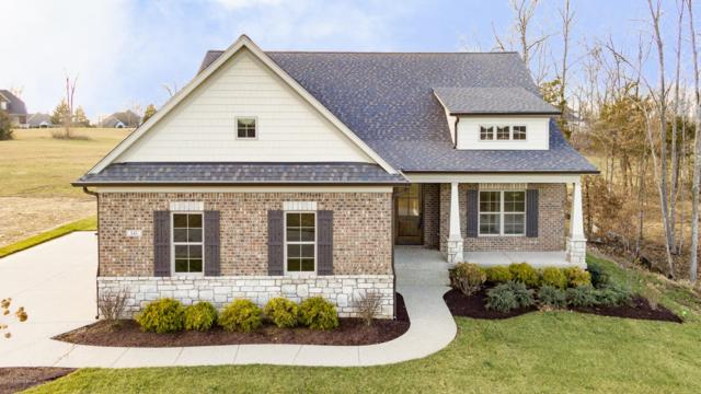 141 Gavin Ct, Louisville, KY 40245 (#1525874) :: The Price Group
