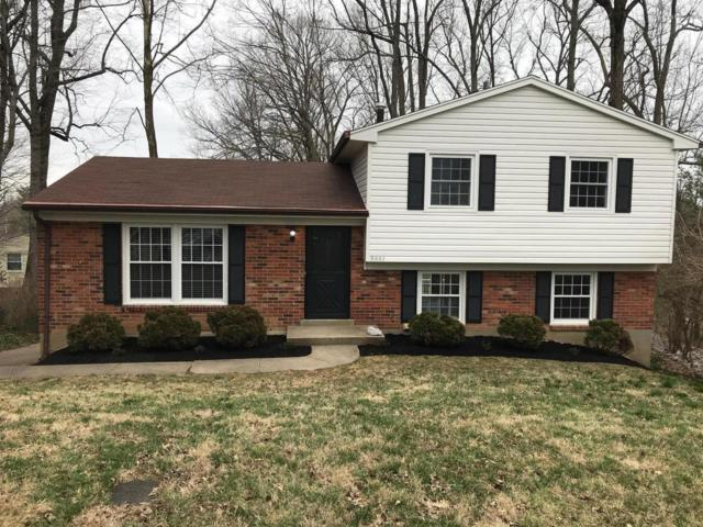 8001 Casualwood Ct, Louisville, KY 40291 (#1526794) :: Team Panella