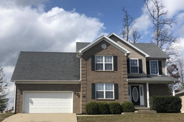 307 Vineland Place Dr, Vine Grove, KY 40175 (#1526953) :: At Home In Louisville Real Estate Group