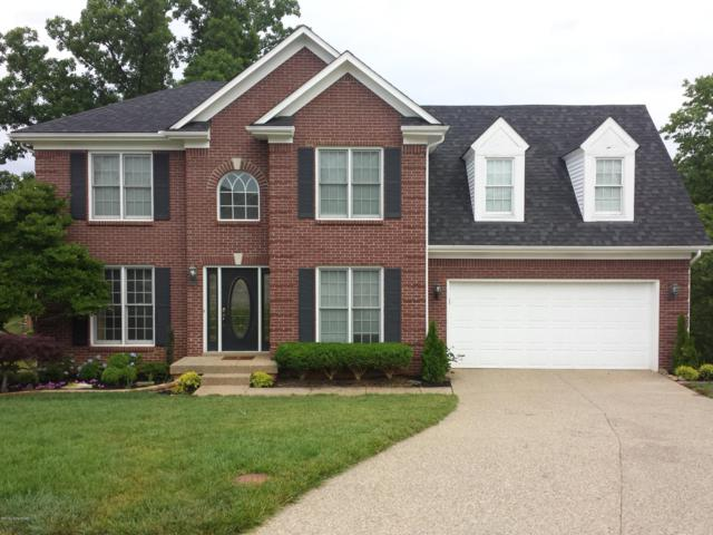 12001 Pleasant Lawn Ct, Louisville, KY 40299 (#1526971) :: Team Panella