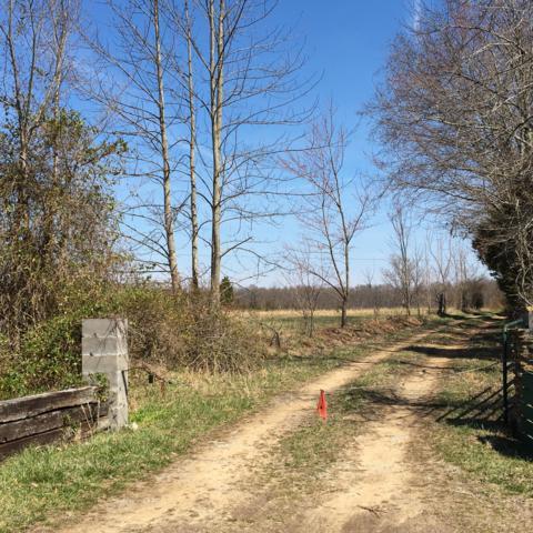 0 Edgar Jessee Rd, Russell Springs, KY 42642 (#1527221) :: Keller Williams Louisville East