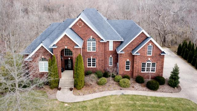 283 Persimmon Ridge Dr, Louisville, KY 40245 (#1527599) :: The Sokoler-Medley Team