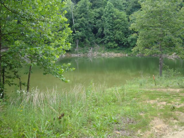 lot 54 Gannaway Rd, Leitchfield, KY 42754 (#1529581) :: The Price Group