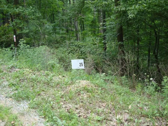 lot 153 Gannaway Rd, Leitchfield, KY 42754 (#1529593) :: The Price Group