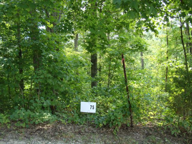 lot 154 Gannaway Rd, Leitchfield, KY 42754 (#1529594) :: The Price Group