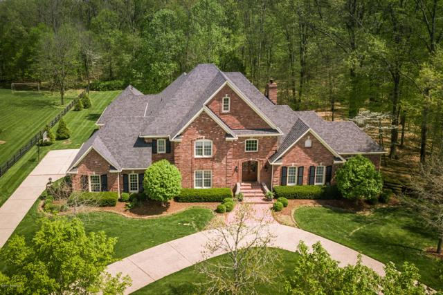 2101 Forest Pointe Ln, Louisville, KY 40245 (#1530440) :: The Sokoler-Medley Team