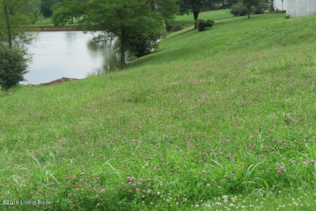 10 Willow Run Dr, Taylorsville, KY 40071 (#1532321) :: The Sokoler-Medley Team
