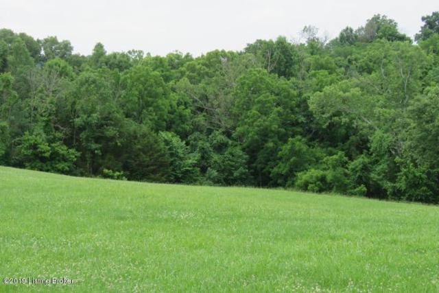 14 Willow Run Dr, Taylorsville, KY 40071 (#1532322) :: The Sokoler-Medley Team
