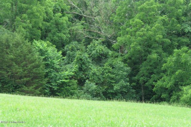 9 Briar Hill Rd, Taylorsville, KY 40071 (#1532328) :: The Sokoler-Medley Team